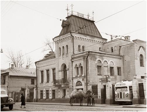 «Уголок дедушки Дурова», 1965 год.